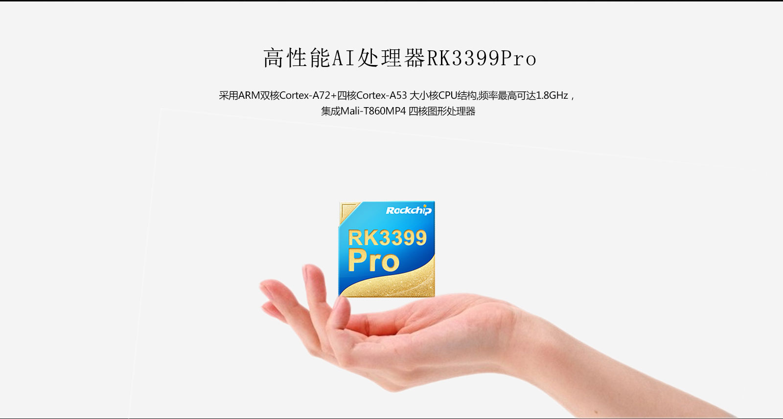 LCB3399Pro-WEB_02.jpg